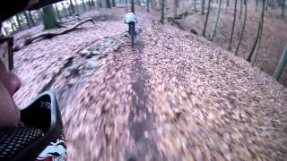 preview picture of video 'Stadtwald.Grimma.E028.MTB.1080p.MOV'