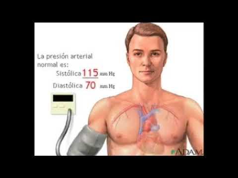 Concepto de la crisis hipertensiva guías clínicas ocurrencia de primeros auxilios