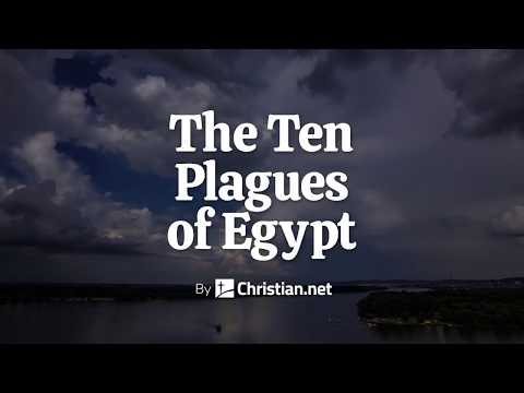 Exodus 7- 11: The Ten Plagues Of Egypt | Bible Story (2020)