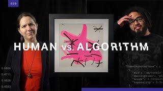 What the world looks like to an algorithm