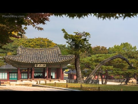 Medical Tourism in South Korea | Low Cost Health Care Travel