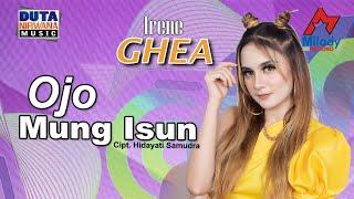 Download lagu Irenne Ghea Ojo Mung Isun Mp3