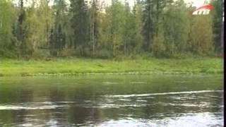 Рыбалка квест подкаменная тунгуска ленок