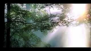 Nathan Osmond - A Little Boys Prayer