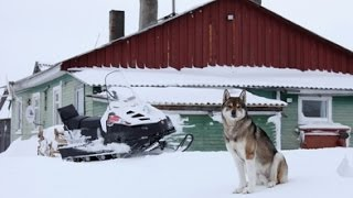 Охота в Архангельской области  Беломорская одиссея РМ