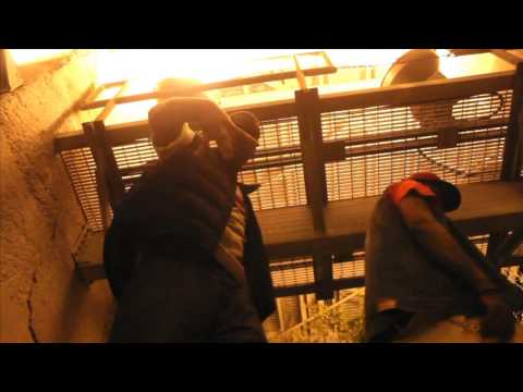 "Dave Lucci ""Mollyville"" Official video"