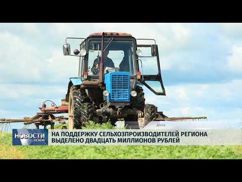Новости Псков 12.07.2018 # На поддержку сельхозпроизводителей выделят 20 миллионов рублей