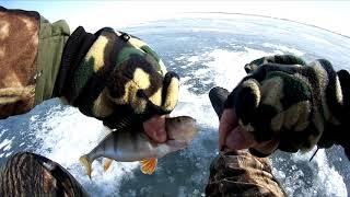 Рыболовный клев в кокшетау