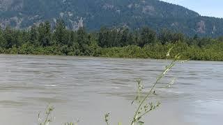 Fraser River Rising