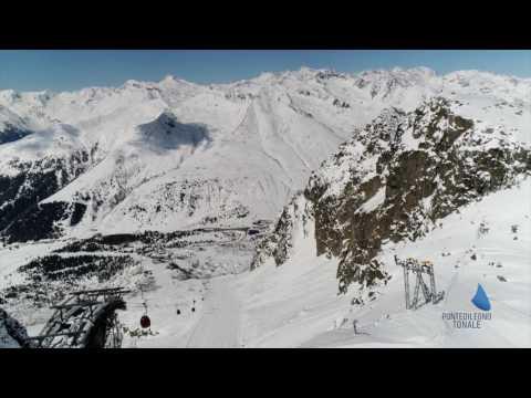 Presena Glacier 2017