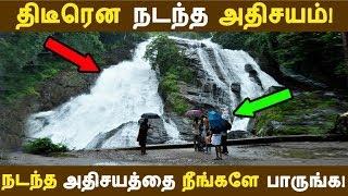 திடீரென நடந்த அதிசயம்! நடந்த அதிசயத்தை நீங்களே பாருங்க! | Tamil News | Tamil Seithigal