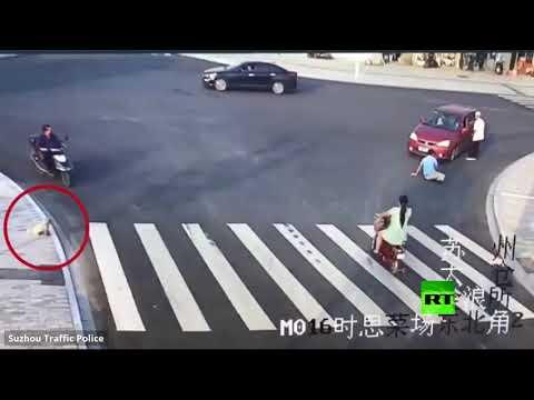 العرب اليوم - شاهد: كيف يعطي كلب درسًا في قواعد المرور