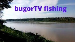 Рыбалка в саратове на прудах и озерах