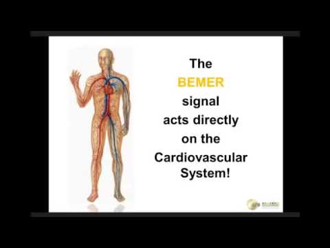 BEMER affect on a liver | Dunedin Massage Therapist | Longwell
