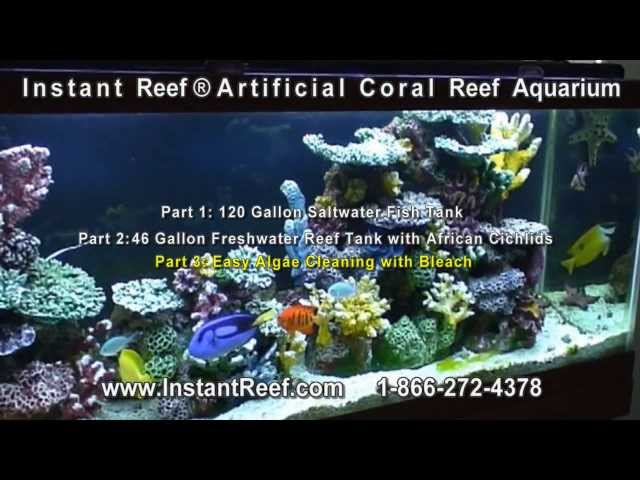 Artificial Coral Reef Aquarium Setup & Maintain, Reef Tank for Saltwater Marine Fish Freshwater Fish