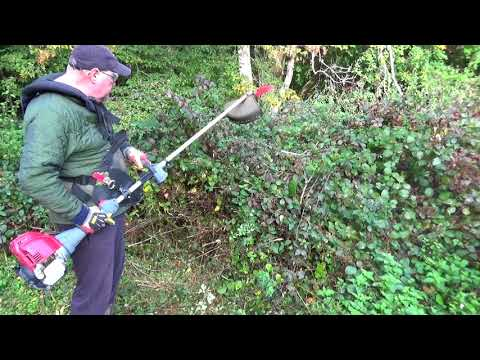 Review – Oregon Universal Mulching Brushcutter Blade – Absolutely Brilliant!