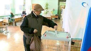 В Новгородской области проходят выборы губернатора