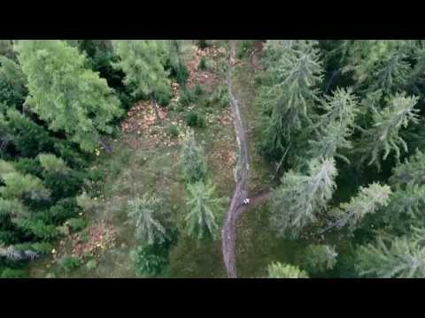 קטעי וידאו מרהיבים מהאוויר!