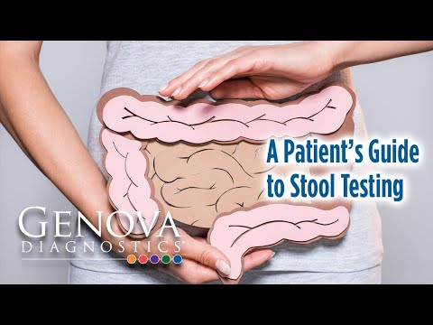 A Patient's Guide to Stool Testing