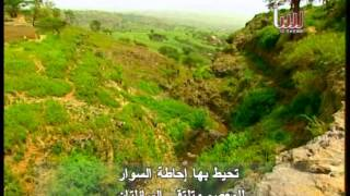 preview picture of video 'Yemeni city of Ibb  French language'