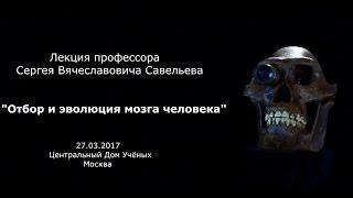 """Лекция С.В. Савельева """"Отбор и эволюция мозга"""""""
