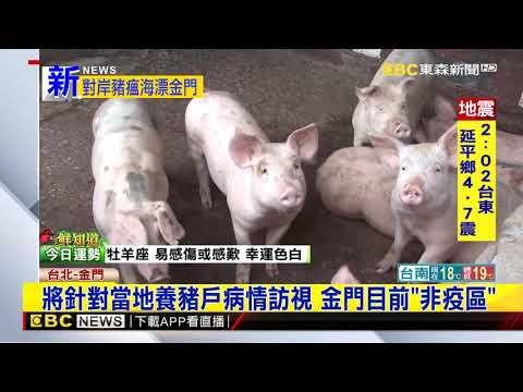 最新》金門現「非洲豬瘟病毒」死豬 農委會初判:應從陸來