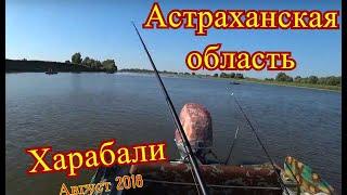 Рыбалка в харабали 2018 форум