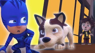 PJ Masks Episode | CLIPS ⭐️ Catboy and the New Wolfie Dog Rescue  ⭐️ HD | Cartoons for Kids