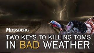 Turkey Hunting Bad Weather: How To Turkey Hunt Stormy Days