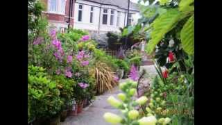 preview picture of video 'Rockcliffe Avenue, Whitley Bay'