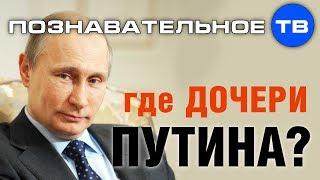 Где дочери Путина? (Познавательное ТВ, Николай Стариков)