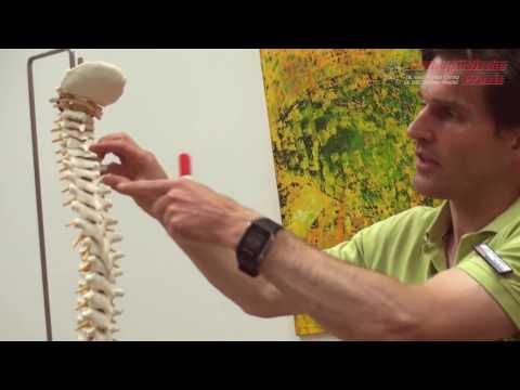Salbe für Gelenkschmerzen in den Knien