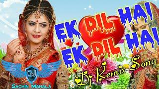 Ek Dil Hai Mera Dil Hai | Hindi Love Song | Full Dj Remix | Ek