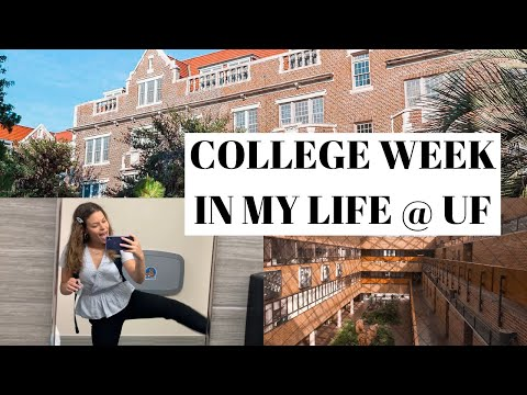 COLLEGE WEEK IN MY LIFE @ UF   first week of classes + public relations student
