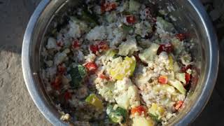 How to make Veg Food For Dogs    Best Home Diet at Cheap Price   Scoobers