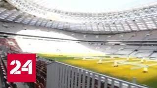 """Обновленные """"Лужники"""": как изменился стадион"""