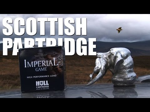 Driven partridge shooting in Scotland