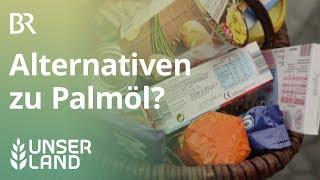 Palmöl in Futter- und Lebensmitteln | Unser Land | BR Fernsehen