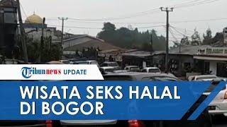 Video Testimoni Bule soal Wisata Seks Halal di Bogor Tersebar Luas, Kepolisian Langsung Bertindak