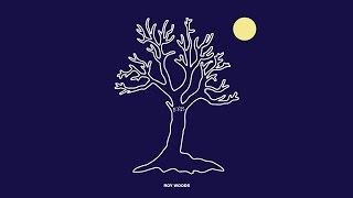 Roy Wood$   Jealousy (Stwo Remix)