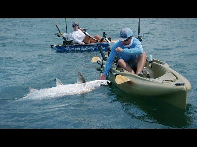 Kayak Fishing - Giant Tarpon and Jack Crevalles - 4K