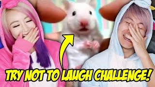 Try Not To Laugh Challenge! * Impossible Edition!