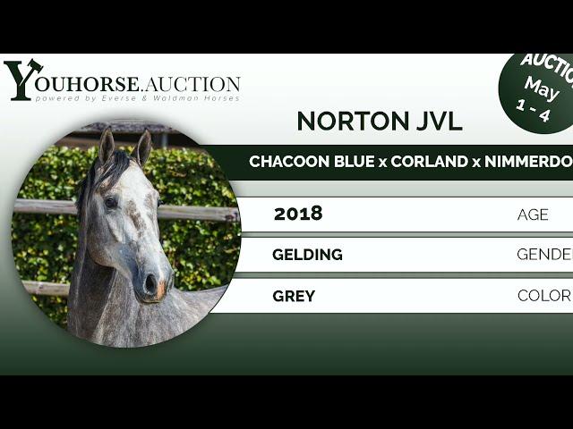 Norton JVL