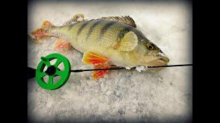 Отчеты о рыбалке салтаим