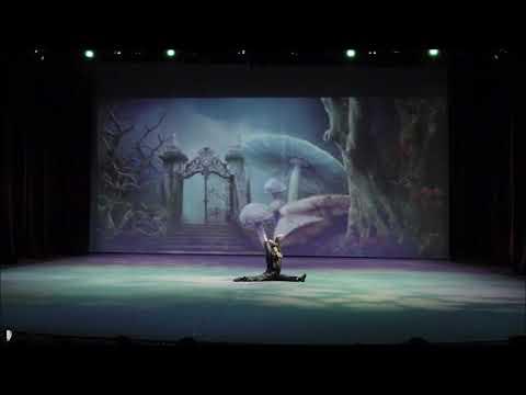 Ver vídeoUna compañía de danza muy especial