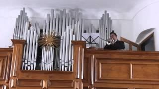G. Zamphir: Píseň osamělého pastevce / (Petr Linhart - trubka)