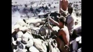اغاني طرب MP3 من هم اقوى المقاتلين في العالم شاهد لن تصدق....yemen ..اليمن تحميل MP3