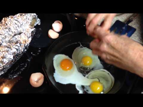 Video Comparing free range chicken eggs to store bought 1 of 2