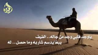 شيلة يمنى تمد «2016»
