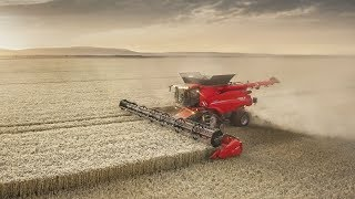 Case IH Axial-Flow 250